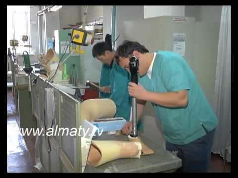 Протезы для ног из Японии для казахстанских инвалидов