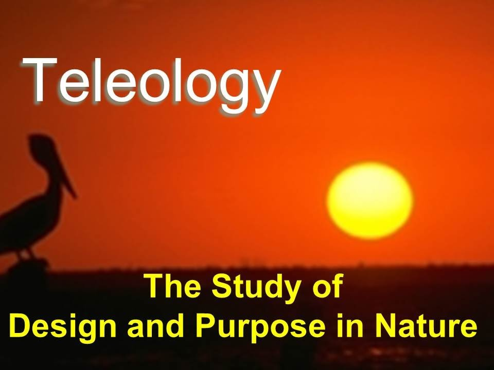 Teleology - The Study of Design and Purpose in Nature - YouTube