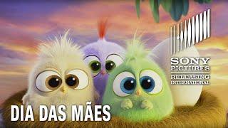 Download Song Angry Birds O Filme | Feliz Dia das Mães | 12 de maio nos cinemas Free StafaMp3