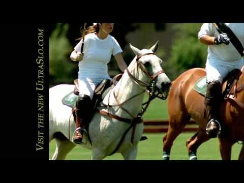 Polo Pony ride in UltraSlo @ 3000FPS