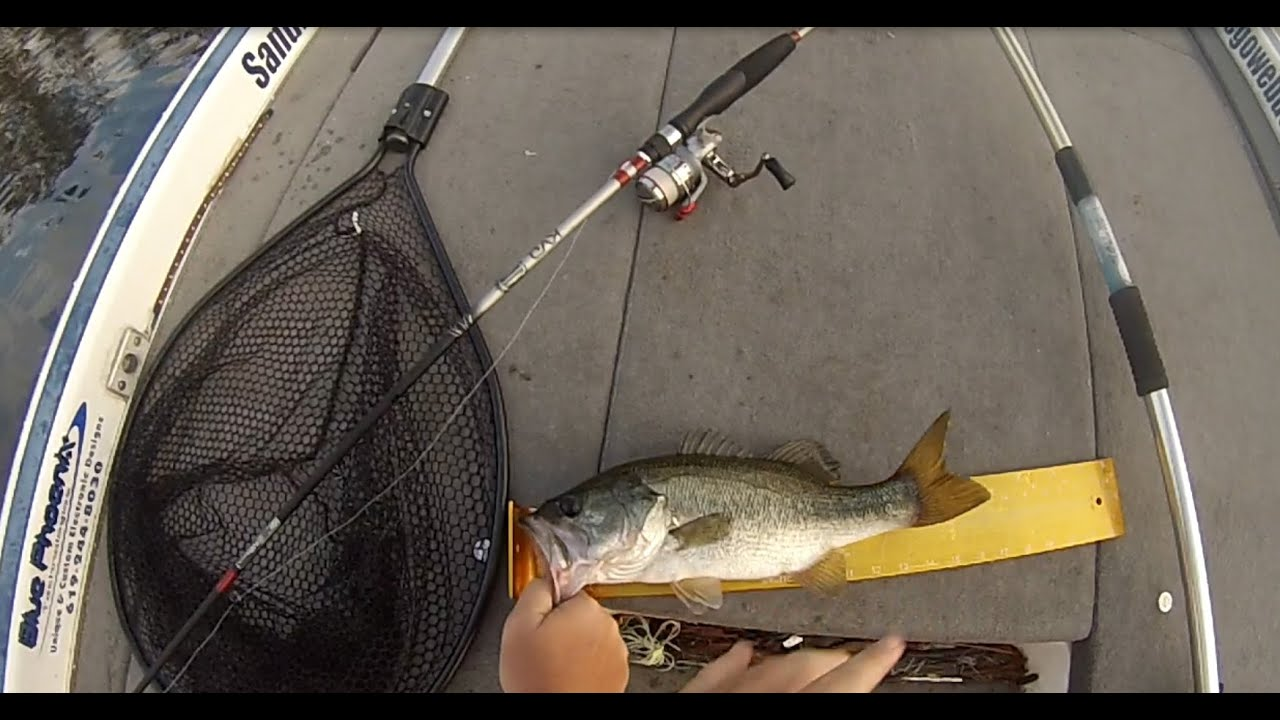 Topwater bass fishing lower otay with jeff fishing dome for Topwater bass fishing