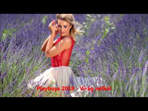 Playboys 2018  - virág nélkül
