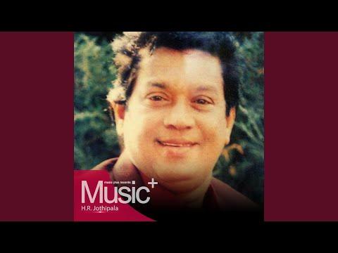 Sithum Pathum Sanda Adare video