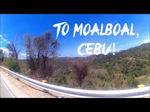 Cebu Trip: Snorkelling at Tuble Marine Sanctuary in Moalboal