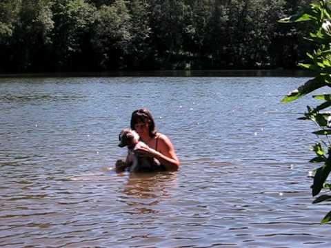 Pep's au lac de l'eau d'heure