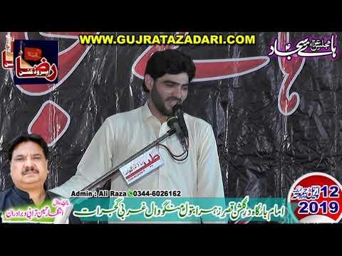 Zakir Syed Ali Raza Shah of Gujrat  | 12 April 2019 | Mangowal Gujrat || Raza Production