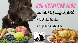 dog diet plan : low cost : Malayalam : ഭക്ഷണക്രമം അളവ് : ചിലവ് കുറച് നായയെ വളത്താം : All breed dogs