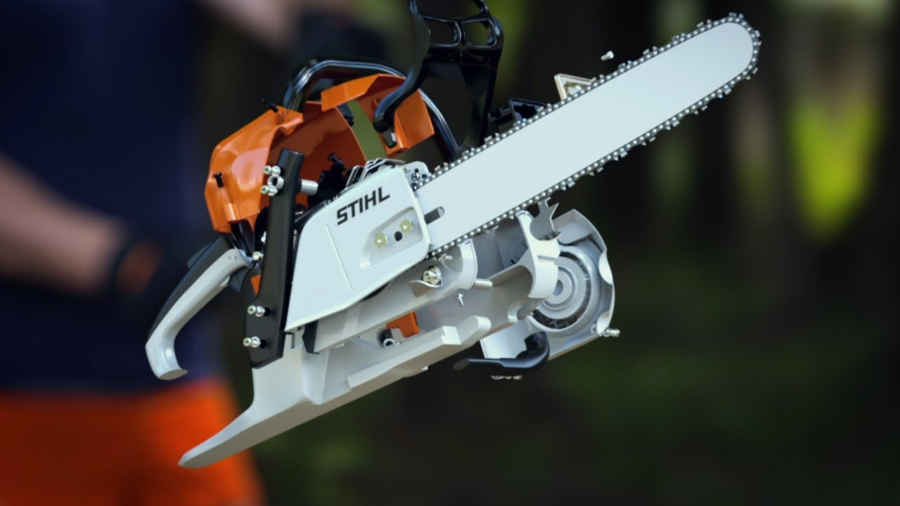 Chainsaw Dissection