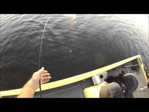 Summer Bass Fishing Toledo Bend Aug 11 2012