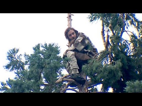 Seattle's #ManInTree Becomes a Huge Meme | What's Trending Now