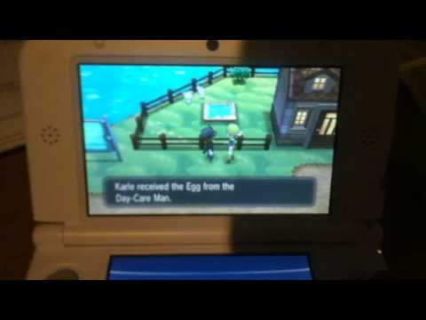 POKEMON X AND Y UNLIMITED EGGS BREEDING GLITCH?!