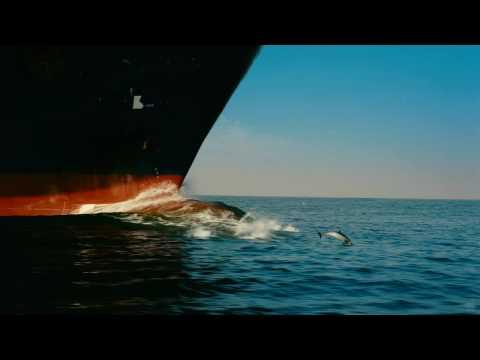Wild Ocean 3D Trailer (HD)