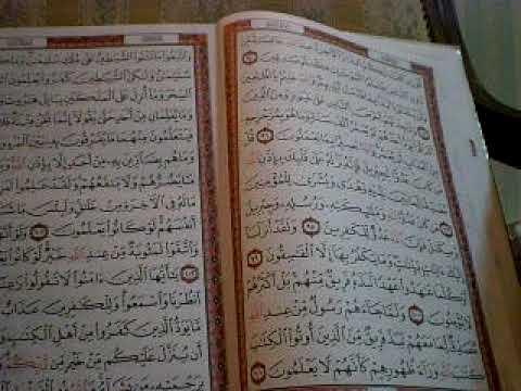 19 Tafsir Pimpinan Ar Rahman Surah Al-Baqarah Ayat 102 105