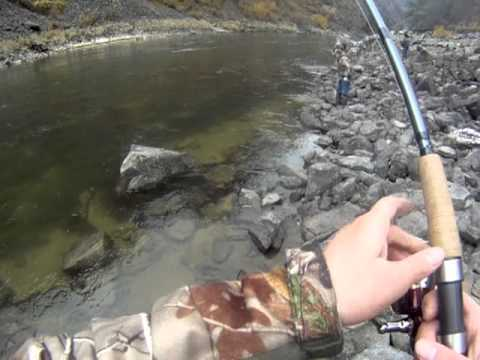 Salmon River Idaho MONSTER Steelhead Fishing Trip Jet Boat 37