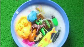 Learn Sea Animals Zoo Animals Farm Animals Names Insects Names Elephant Toys For Kids Education