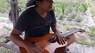 Pak tani bermain gitar gaya unik