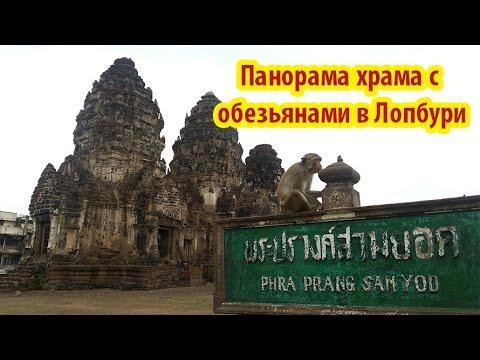 Панорама храма обезьян в Тайланде.