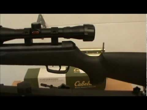 Gamo Big Cat 1250 .177 Cal Air Rifle Review. Shooting and Chrony Test