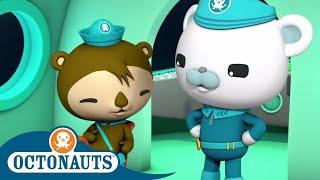 Octonauts - Shellington and Captain   Cartoons for Kids   Underwater Sea Education