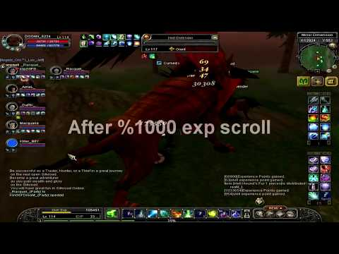 Silkroad online finish ? / %1000 exp scroll