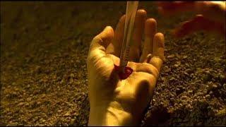 リゾーリ&アイルズ シーズン6 第18話