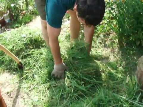 Мульча своими руками из травы 88