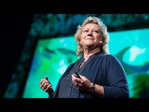 Denise Herzing: Could we speak the language of dolphins?