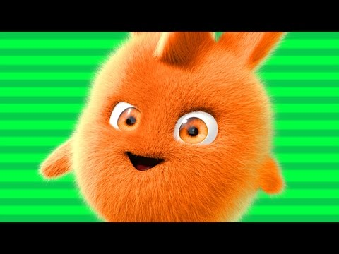 Sunny Bunnies | Videos For Kids |  Concert | Funny Cartoons for babies