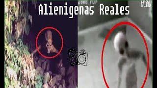 alienigenas reales 2017 capturados vivos y grabados en video