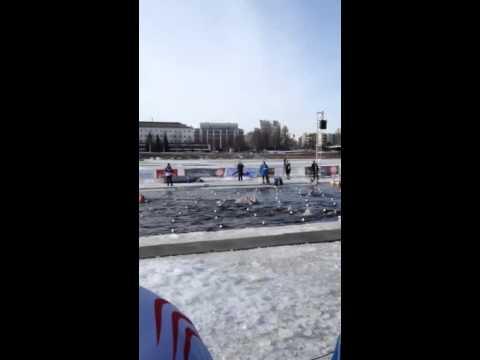 Verdensmesterskaber i vintersvømning