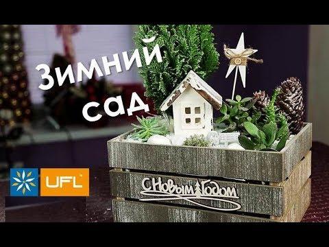 Подарок своими руками! 😍🎁 Зимний сад! 🌲❄