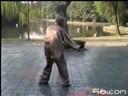 Chen Zhao Kui Tai Ji San Lu Duan Quan 24 postures