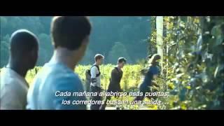 MAZE RUNNER: CORRER O MORIR - The Maze Runner - Trailer
