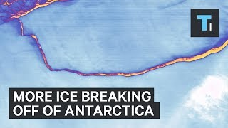 More ice is about to break off of Antarctica — and it