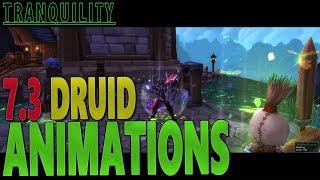 7.3 DRUID CASTING/SPELL ANIMATIONS - (World of Warcraft: Legion)