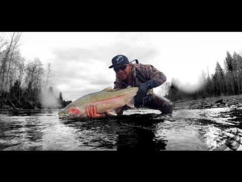 Several 20 Pound Steelhead On Camera ~ Addicted