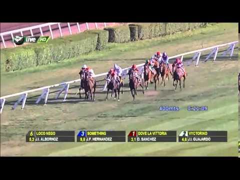 Vidéo de la course PMU PREMIO JAMAS LO OLVIDARE H.