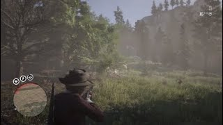Red Dead Redemption 2 - When kids try and mess with me online