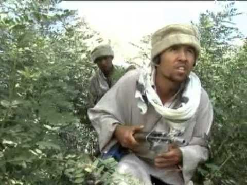 Афганская граница  Таджикистан