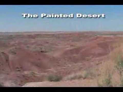 'Petrified Forest National Park