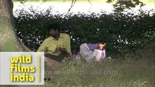 Couples meet clandestinely in Kolkata park, India