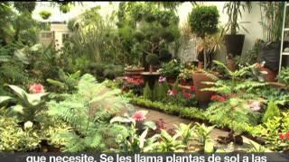 Para cada tipo de plantas, un cuidado distinto [Revista del Consumidor TV 37.1]