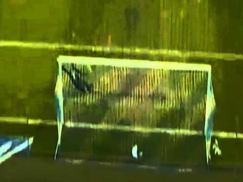 Gylfi Sigurdsson Amazing Goal (Slovenia 1-1 Iceland) 22.03.2013