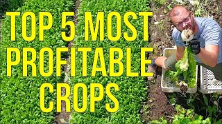 My 5 Most Profitable Crops