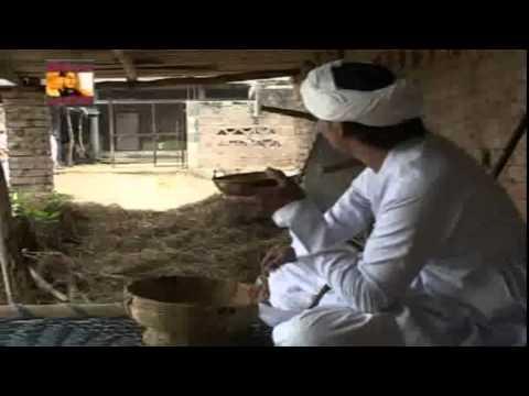 Maa Brahmani Film