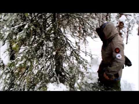 Winter Survival Shelter under a large conifer
