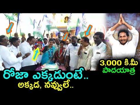 MLA Roja Celebrates Jagan's Padayatra Success | YS Jagan Completes 3000 KMS Padayatra |mana aksharam