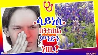 «ሳይነስ» በትክክል ምንድን ነዉ? - What is Sinus Allergy? - DW