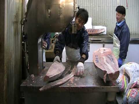 Tsukiji fish market, tokyo - bandsaw cutting of Tuna from morning auction