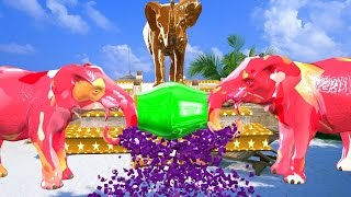 Learn With Elephant Break Tha Table Colourful Colour Song || 3D Animals  Nursery Rhymes